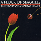 The Story Of A Young Heart