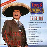 15 Éxitos (Voces De América)