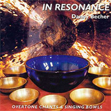 Danny Becher - In Resonance