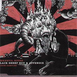 Black Sheep Boy Appendix (EP)